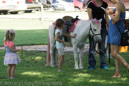equestfest-petting-pink-pony